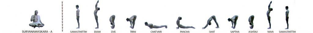 La pratique de la série primaire Ashtanga yoga Vinyasa purifie le corps et l'esprit des ses impuretés